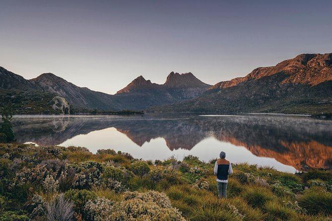Shore Excursion - Cradle Mountain day tour from Burnie - Accommodation Yamba