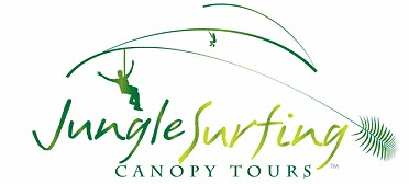 Jungle Surfing Canopy Tours and Jungle Adventures Nightwalks - Accommodation Yamba