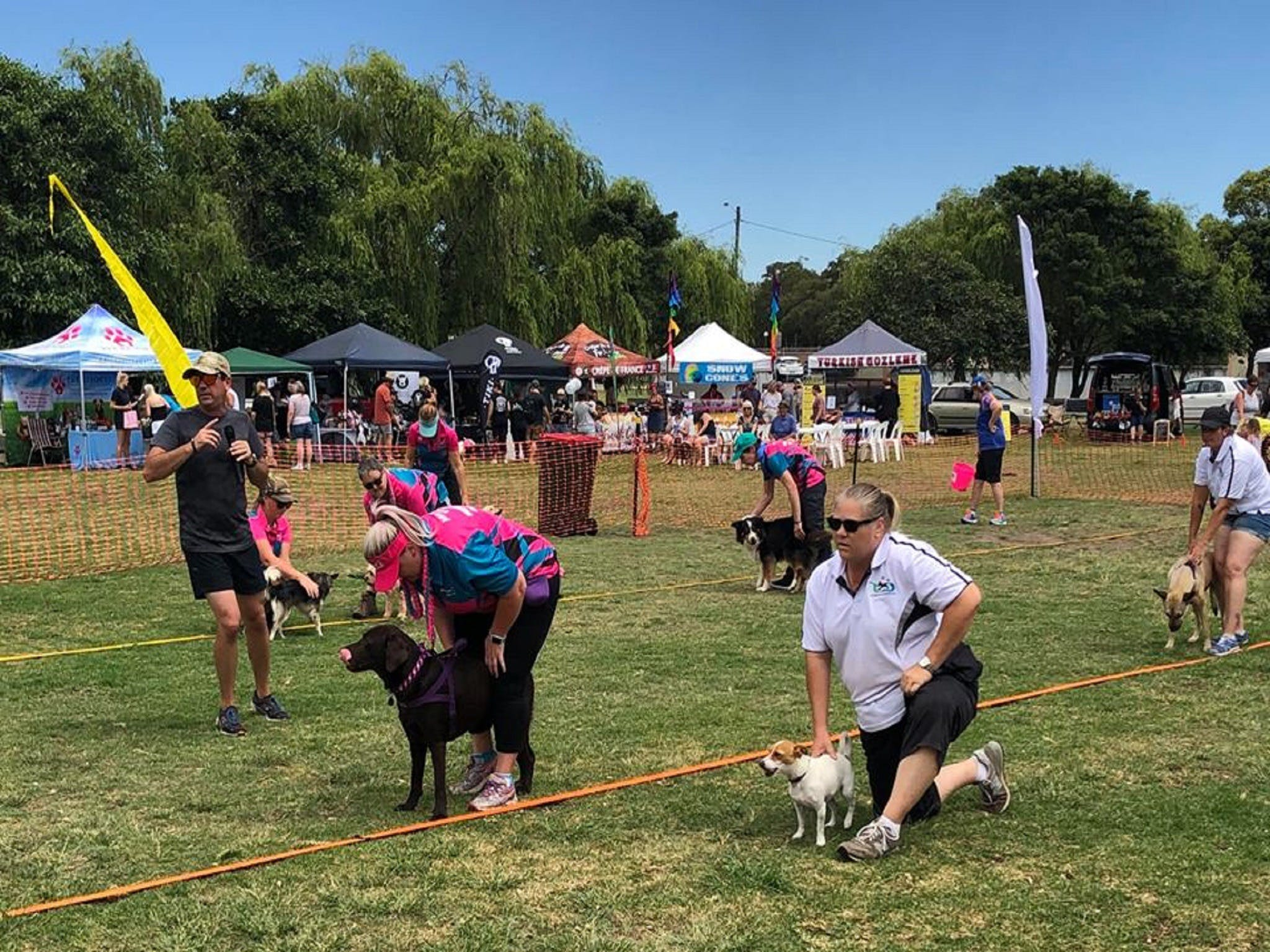 Dogs in the Park Orange - Accommodation Yamba