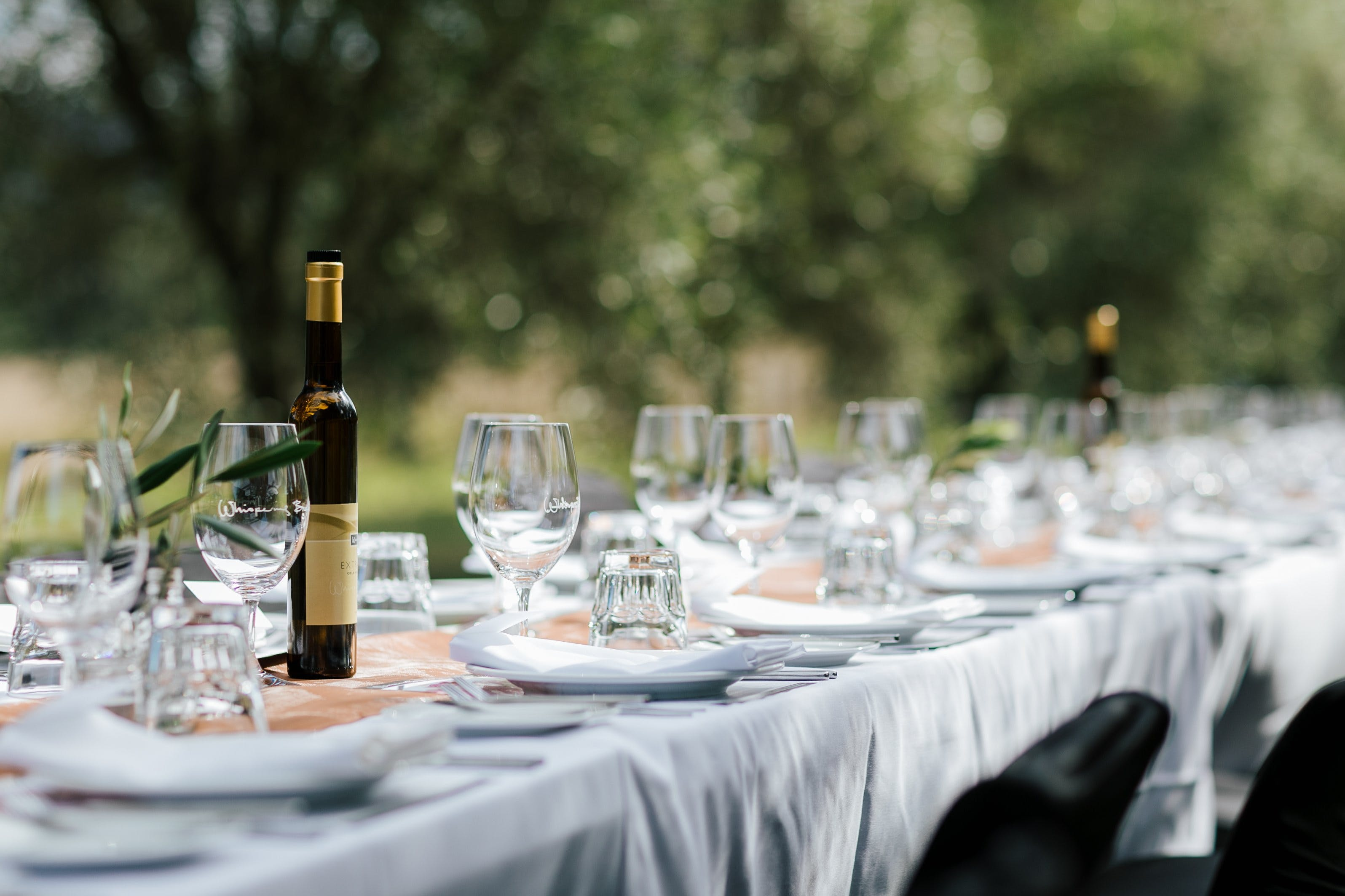 Whispering Brook Olive Long Table Luncheon - Accommodation Yamba