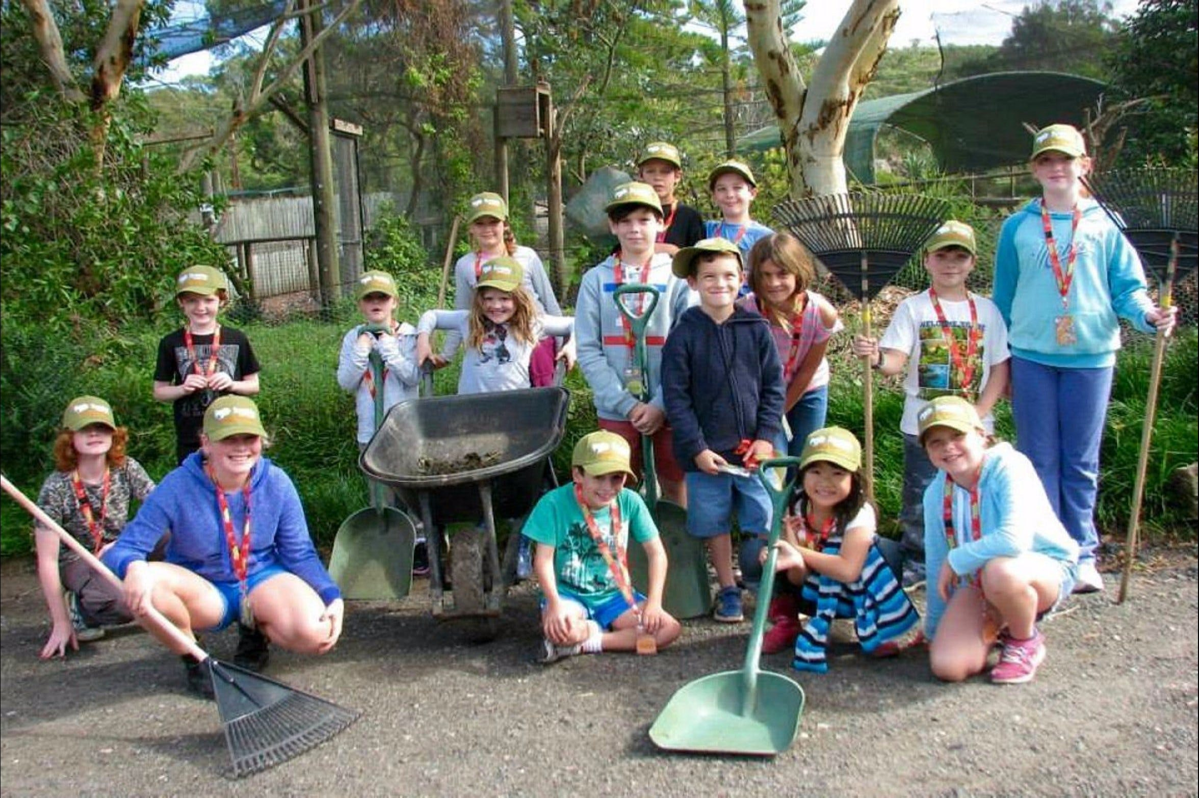 Symbio Wildlife Park - Junior Keeper Camp - Accommodation Yamba