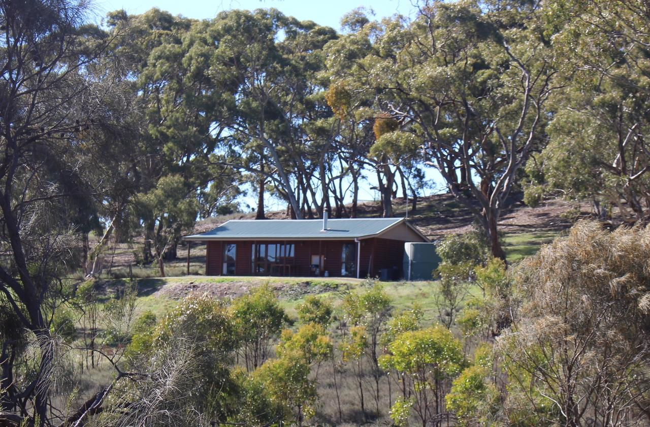 Molly's Chase - Accommodation Yamba
