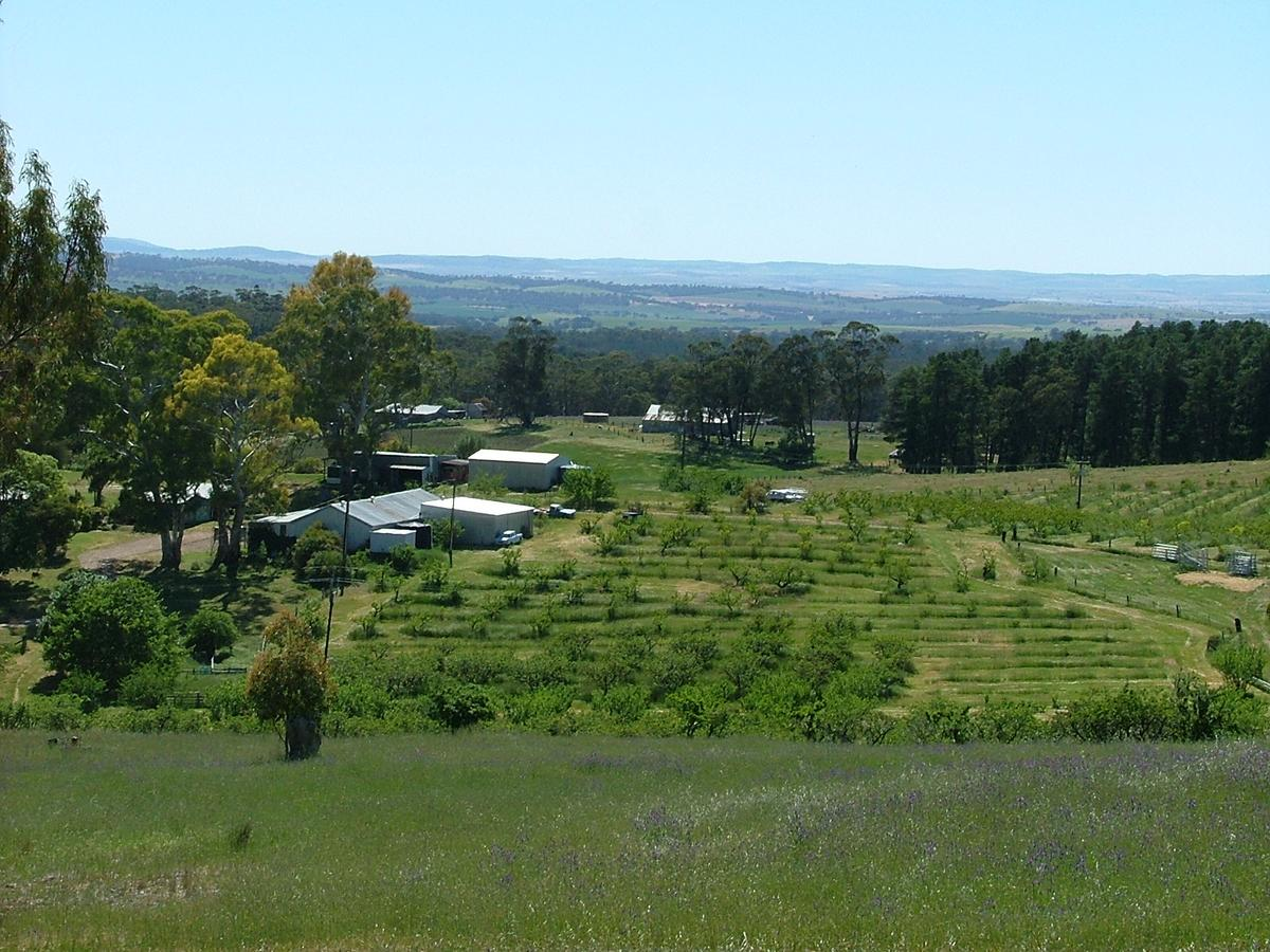 Taralee Orchards - Accommodation Yamba