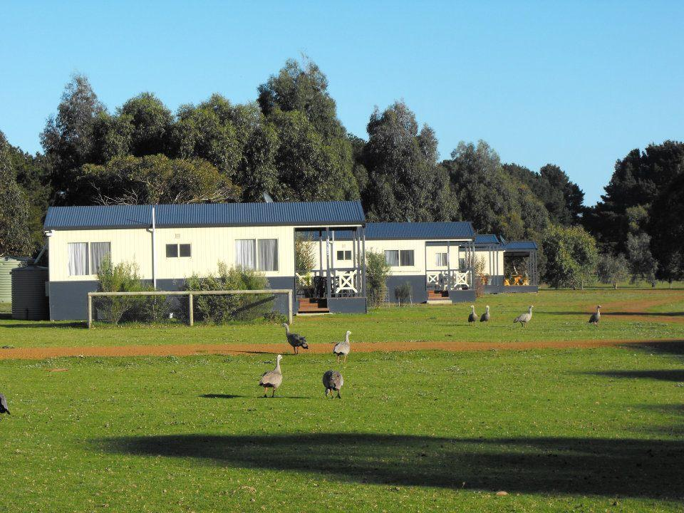 Western KI Caravan Park  Wildlife Reserve - Accommodation Yamba