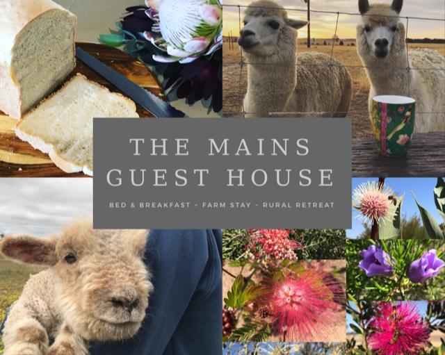The Mains Guest House - Accommodation Yamba